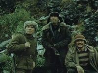 Кадр из фильма «Территория»
