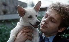 Кадр из фильма «Щен из созвездия Гончих псов»