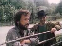 Кадр из фильма «Штормовое предупреждение»
