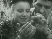 Кадр из фильма «Панцирь»