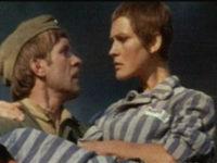 Кадр из фильма «Полынь — трава горькая»