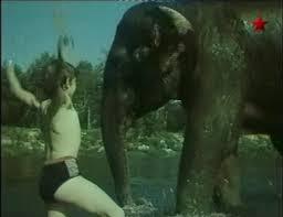 Кадр из фильма «Потерялся слон»