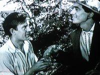 Кадр из фильма «У Крутого Яра»